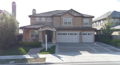 San Ramon Single Family Home For Sale: 5733 Wells Lane