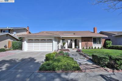 Pleasanton Single Family Home For Sale: 6387 Paseo Santa Cruz