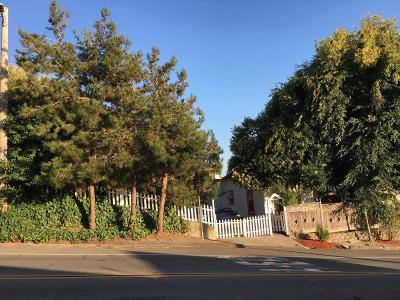 San Leandro Single Family Home For Sale: 1616 167th Avenue