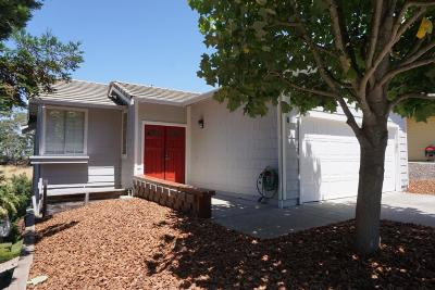 Pinole Single Family Home For Sale: 557 Lopes Lane