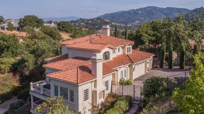 San Mateo County, Santa Clara County Single Family Home For Sale: 20005 Orchard Meadow Drive