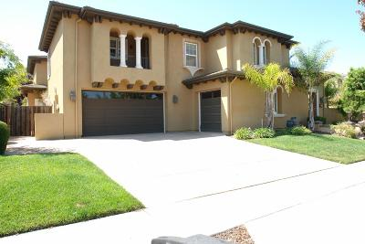 Pleasanton Single Family Home For Sale: 1081 Sunset Creek Lane