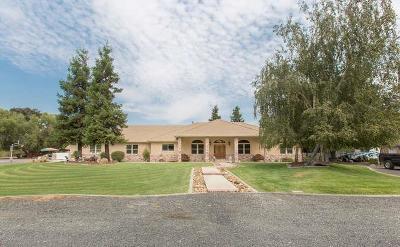 Manteca Single Family Home For Sale: 9885 E Louise Avenue