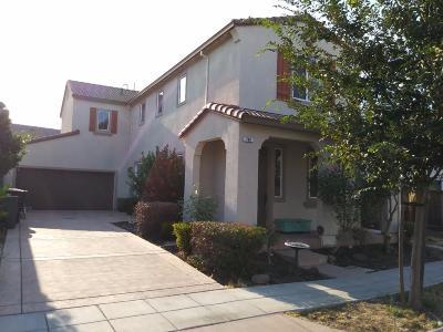 Mountain House Single Family Home For Sale: 769 N Del Prado Street