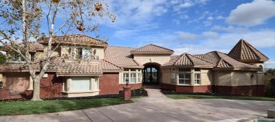 Dublin, Livermore, Pleasanton, Sunol, San Ramon Single Family Home For Sale: 2129 Cascara Court