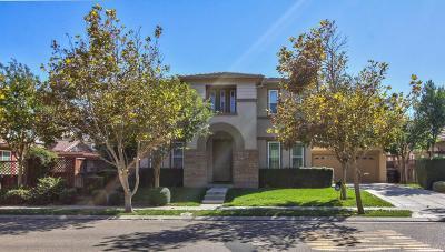 Mountain House Single Family Home For Sale: 362 E Heritage Drive