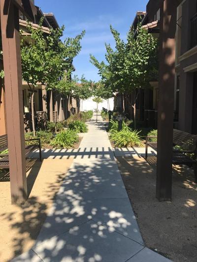 San Mateo County, Santa Clara County Rental For Rent: 493 La Scena Place