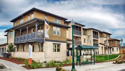 Alameda Condo/Townhouse For Sale: 491 Mitchell Avenue
