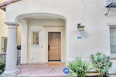 Milpitas Single Family Home For Sale: 72 Butero Lane
