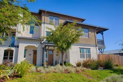 Alameda Condo/Townhouse For Sale: 495 Mitchell Avenue