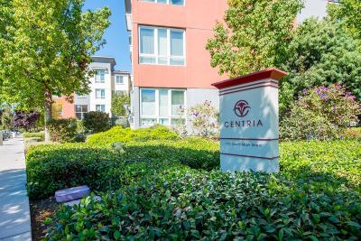 Milpitas Condo/Townhouse For Sale: 1101 S Main Street #112