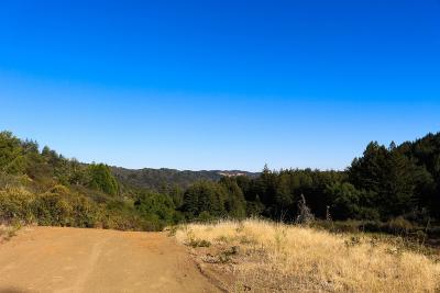Gilroy Single Family Home For Sale: Redwood Retreat Road