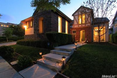 Mountain House Single Family Home For Sale: 257 S Dulce Street