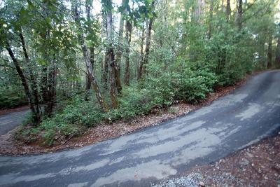 Santa Cruz Residential Lots & Land For Sale: Warren Dr.