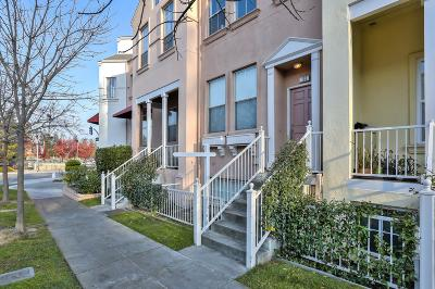 Mountain View Condo/Townhouse For Sale: 103 Pacchetti Way