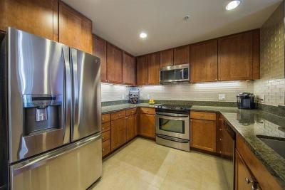 San Jose Condo/Townhouse For Sale: 175 W Saint James Street #305