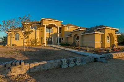 Manteca Single Family Home For Sale: 26651 S Airport Way
