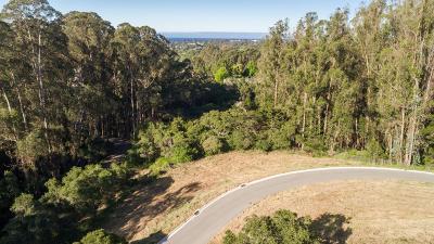 Santa Cruz Residential Lots & Land For Sale: Lupine Lane