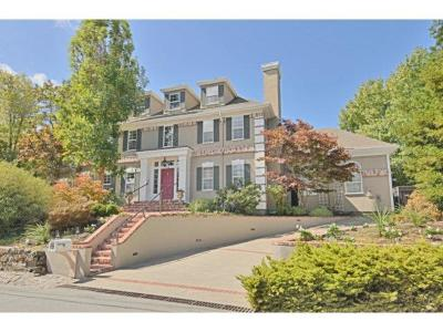 Burlingame Single Family Home For Sale: 120 Valdeflores Drive