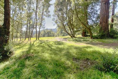 Santa Cruz Residential Lots & Land For Sale: 161 Woods Cove Lane