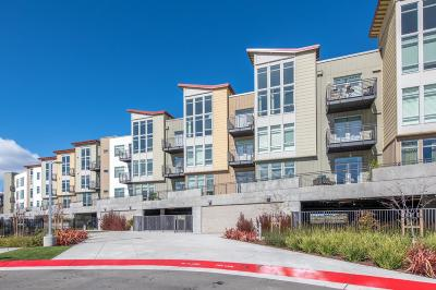 San Mateo Rental For Rent: 400 Mariner's Island Blvd. #304