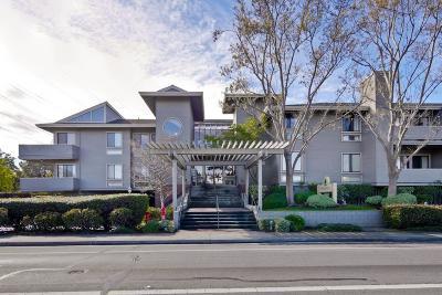 Cupertino Condo/Townhouse For Sale: 22330 Homestead Road #213