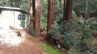 Los Gatos Single Family Home For Sale: 800 Bear Canyon Road