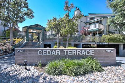 San Jose Condo/Townhouse For Sale: 2869 S Bascom Avenue #507