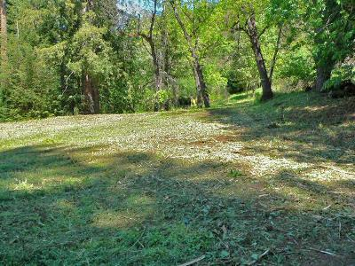 Los Gatos Residential Lots & Land For Sale: 21857 Bear Creek Road