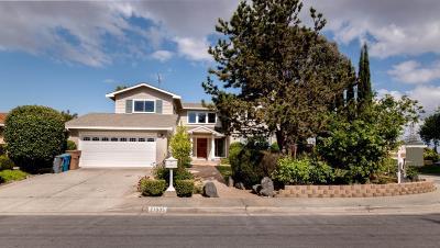 Cupertino Single Family Home For Sale: 21005 Lauretta Drive