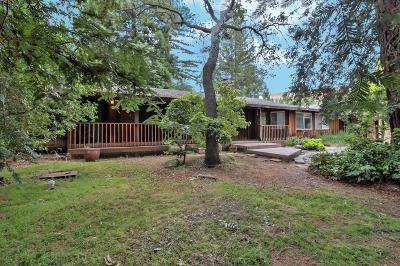 Santa Clara County Single Family Home For Sale: 12910 Watsonville Road