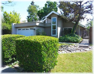 San Jose Single Family Home For Sale: 7029 Via Del Rio
