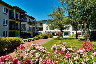 San Mateo Condo/Townhouse For Sale: 847 N Humboldt Street #316