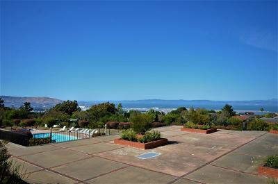 Millbrae Condo/Townhouse For Sale: 1550 Frontera Way #206