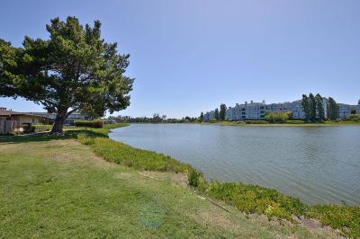 San Mateo Rental For Rent: 1612 Marina Court #C