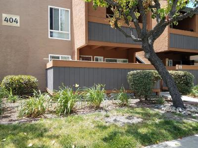 Milpitas Rental For Rent: 404 Dempsey Road #105