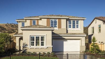 Patterson Single Family Home For Sale: 20919 Zinfandel Court