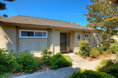 Los Gatos Condo/Townhouse For Sale: 164 Escobar Avenue