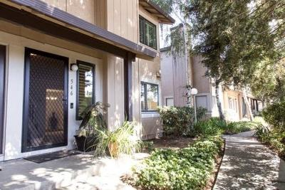 San Jose Condo/Townhouse For Sale: 546 Holly Hock Court