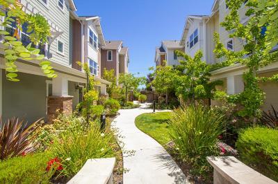 San Mateo Condo/Townhouse For Sale: 301 N Hummingbird Lane