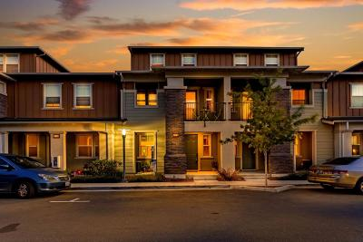 Milpitas Condo/Townhouse For Sale: 729 Fernleaf Drive