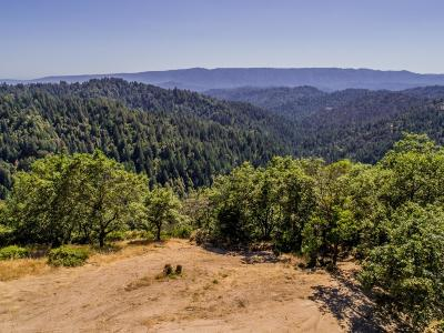 Los Gatos Residential Lots & Land For Sale: 19089 Skyline Boulevard