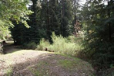 Los Gatos Residential Lots & Land For Sale: Redwood Lodge