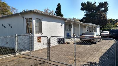Hayward Multi Family Home For Sale: 22654 Myrtle Street