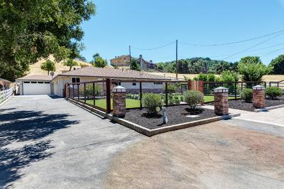 Castro Valley Single Family Home For Sale: 6625 Crow Canyon Road