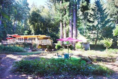 Santa Cruz Single Family Home For Sale: 48 McLean Place