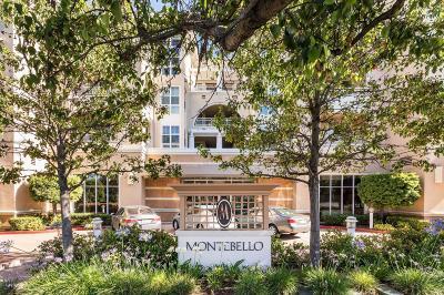 Cupertino Condo/Townhouse For Sale: 20488 Stevens Creek Boulevard #1705