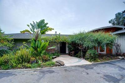 Cupertino Single Family Home For Sale: 21989 Lindy Lane