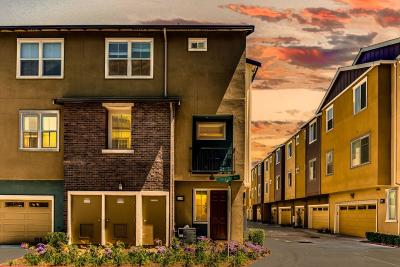 Milpitas Condo/Townhouse For Sale: 1200 Creekside Way