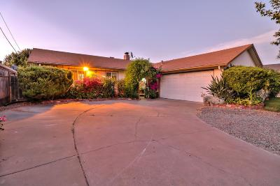 San Jose Single Family Home For Sale: 1797 Branham Lane